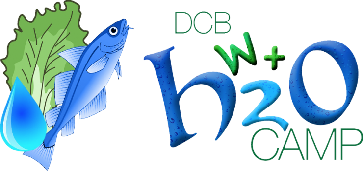 wh2ocamp-logo.png